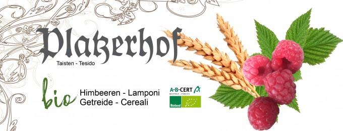 Platzerhof Taisten_Logos-Getreide_Himbeeren_680x260